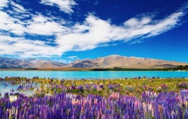 بالصور صور مناظر طبيعية من نيوزلندا 20160712 1856