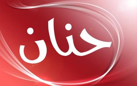 صور باسم حنان 3)