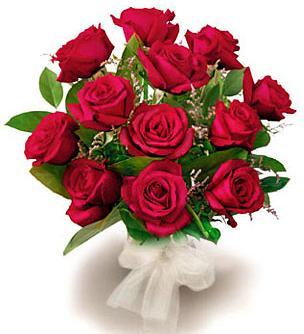 بالصور اجمل صور خلفيات لزهور الورد 20160712 492
