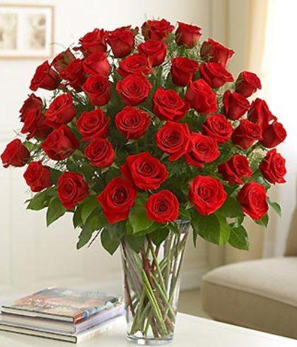 بالصور اجمل صور خلفيات لزهور الورد 20160712 494