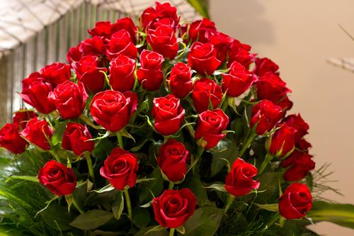 بالصور اجمل صور خلفيات لزهور الورد 20160712 501