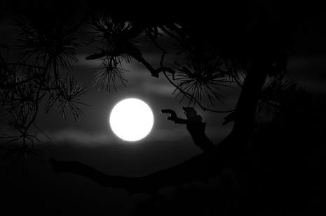 بالصور تفسير رؤية القمر في المنام 20160712 767