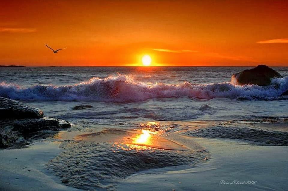 بالصور احسن غروب شمس في العالم 20160713 1859
