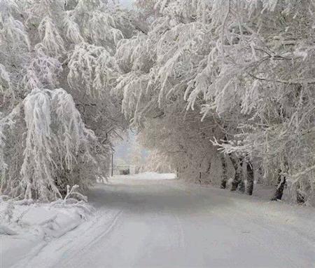 بالصور ما هى العاصفة الثلجية 20160713 2414