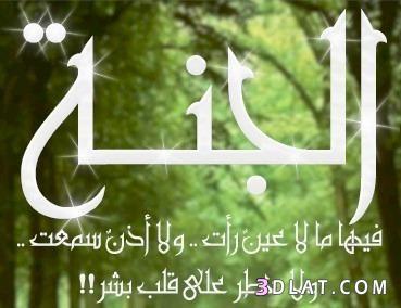 صور دينيه جميلة  خلفيات اسلامية  جديدة  136162659511.jpg