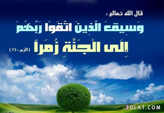 صور دينيه جميلة  خلفيات اسلامية  جديدة  136162659514.jpg