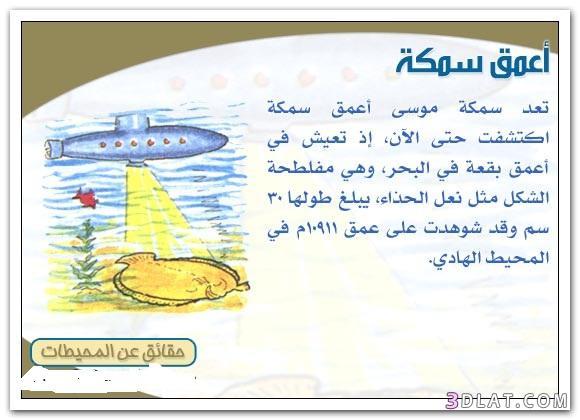 معلومات عجيبة  عَن عالم ألمحيطات 13260971785.jpg