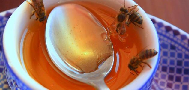 بالصور ادلة تؤكد استخدام العسل كدواء لبعض الامراض الجلدية والباطنية 20160714 2385