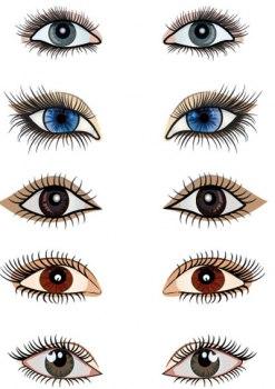 بالصور اليك انواع العيون بالصور 20160714 2471