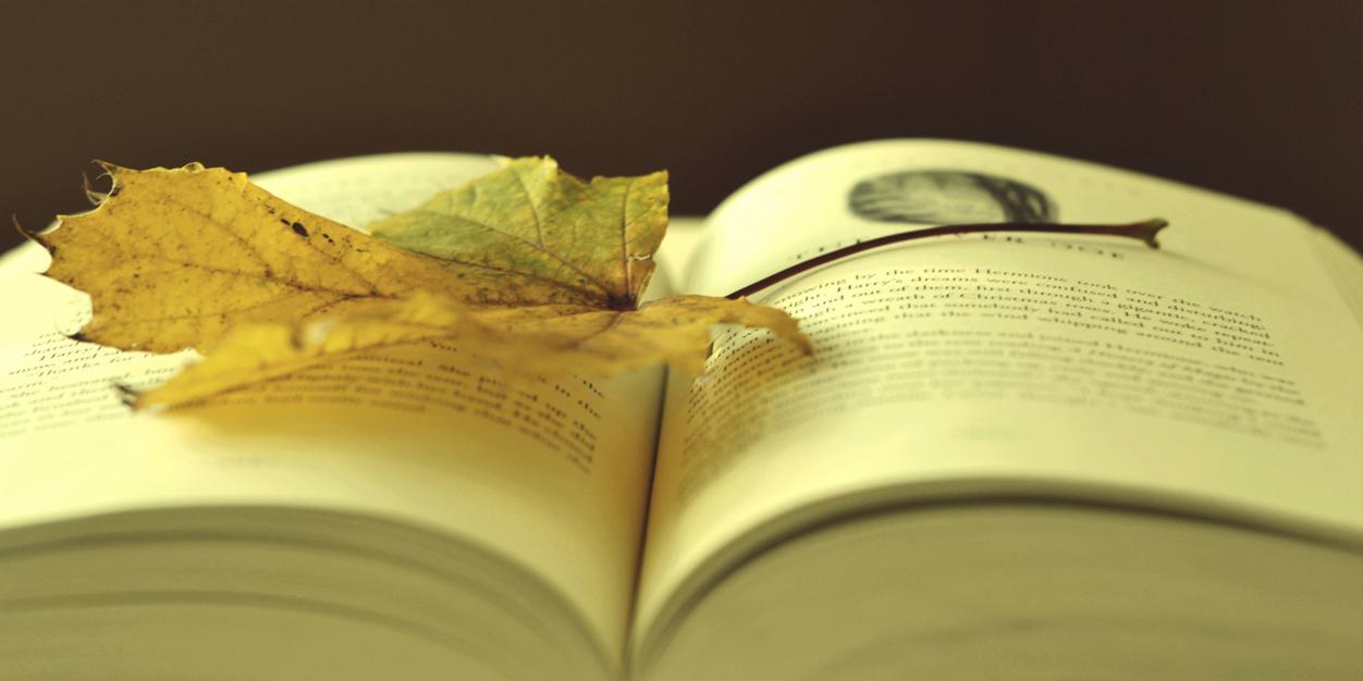 http://www.twitrcover.com/ar/uploads/Leaf-on-a-book-Twitter-Header-8149.jpg
