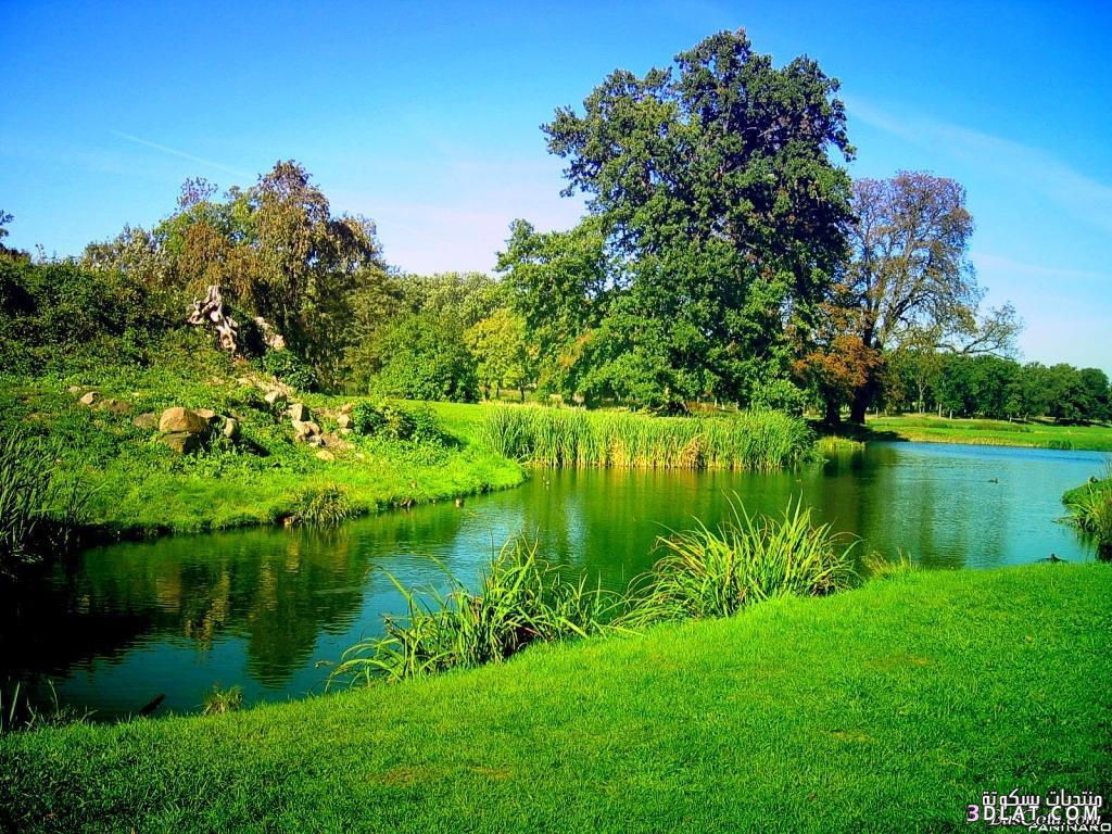 بالصور خلفيات الربيع بجودة عالية 20160714 416