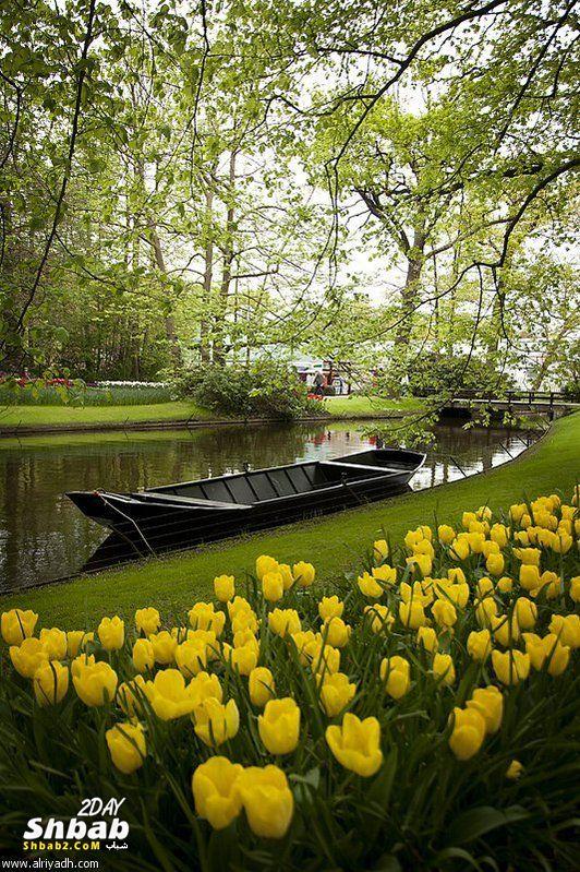 بالصور خلفيات الربيع بجودة عالية 20160714 421
