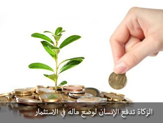بالصور نصاب الزكاة بالجنيه المصري 20160715 724