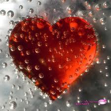 صور قلوب 2019 ،<p></a>&nbsp;</p> <p>&nbsp;</p>صور قلوب جامدة 2019 ،<p>&nbsp;</p> <p>&nbsp;</p>اجمل صور القلوب الحمراء 2019
