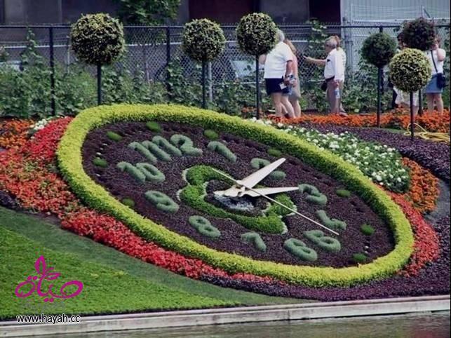 بالصور بالصور| اجمل 10 حدائق عامة في الامارات 20160716 2127