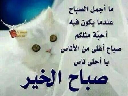 بالصور رسائل صباح الخير للحبيبة 20160716 2465