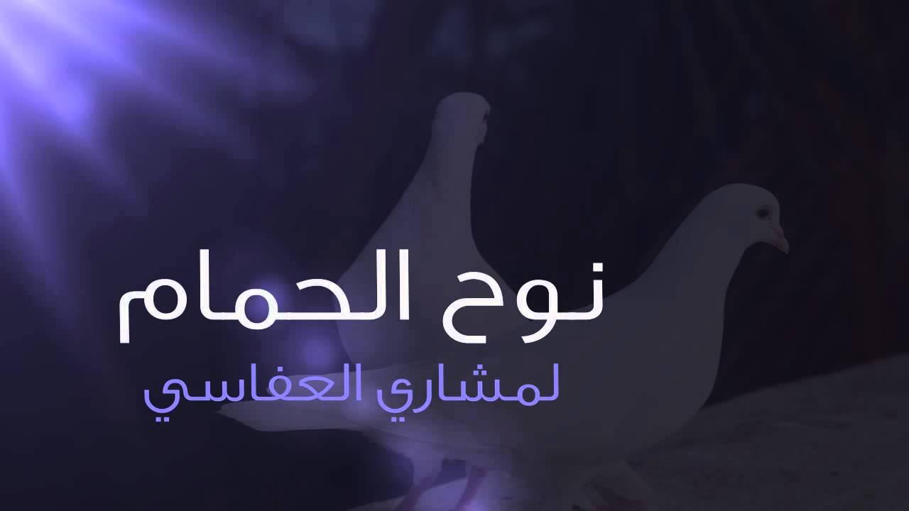 بالصور كلمات الشاعرة نوح الحمام 20160716 477