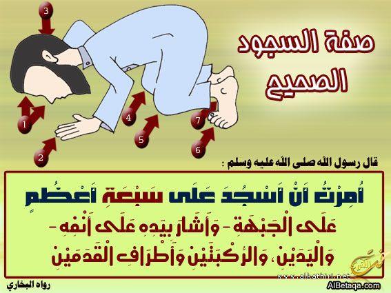 بالصور صوره سجده خاشعه ما احلاها 20160716 883
