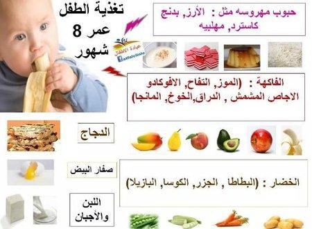 صوره اكل طفل 8 شهور جدول تنظيم اوقات الرضاعة