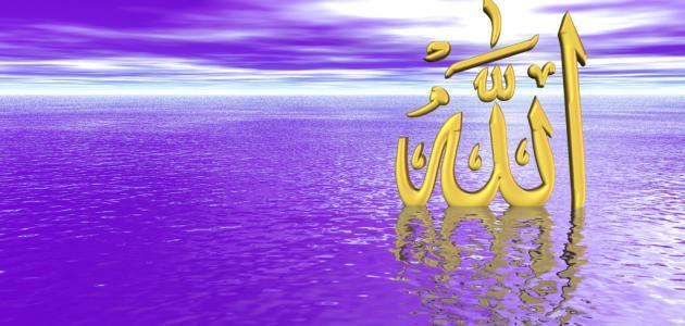 بالصور اجمل شعر في الاسلام شعر عن الفخر بالاسلام 20160719 1626