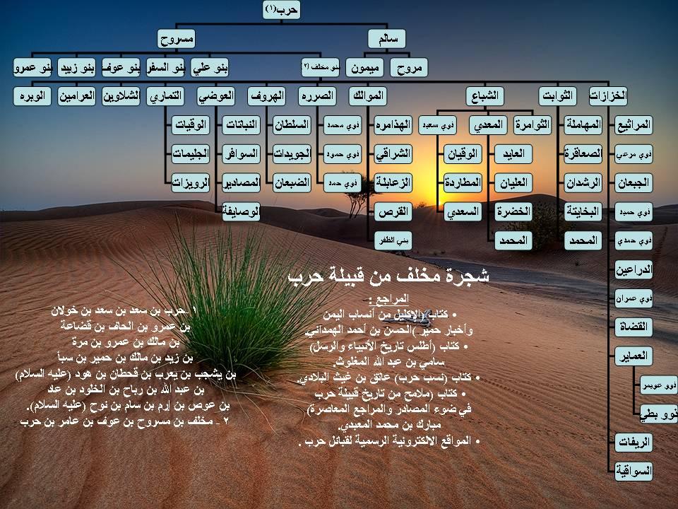 صوره شجرة قبيلة الحربي القحطانية