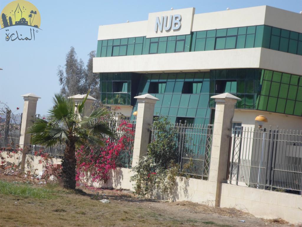 بالصور جامعة النهضة في شرق بني سويف 20160719 2050