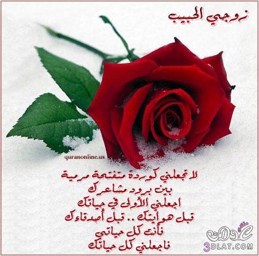 بالصور اجمل رسالة حب جميلة 2019 20160719 263