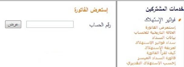 بالصور استعراض فاتورة الكهرباء السعودية 20160719 427