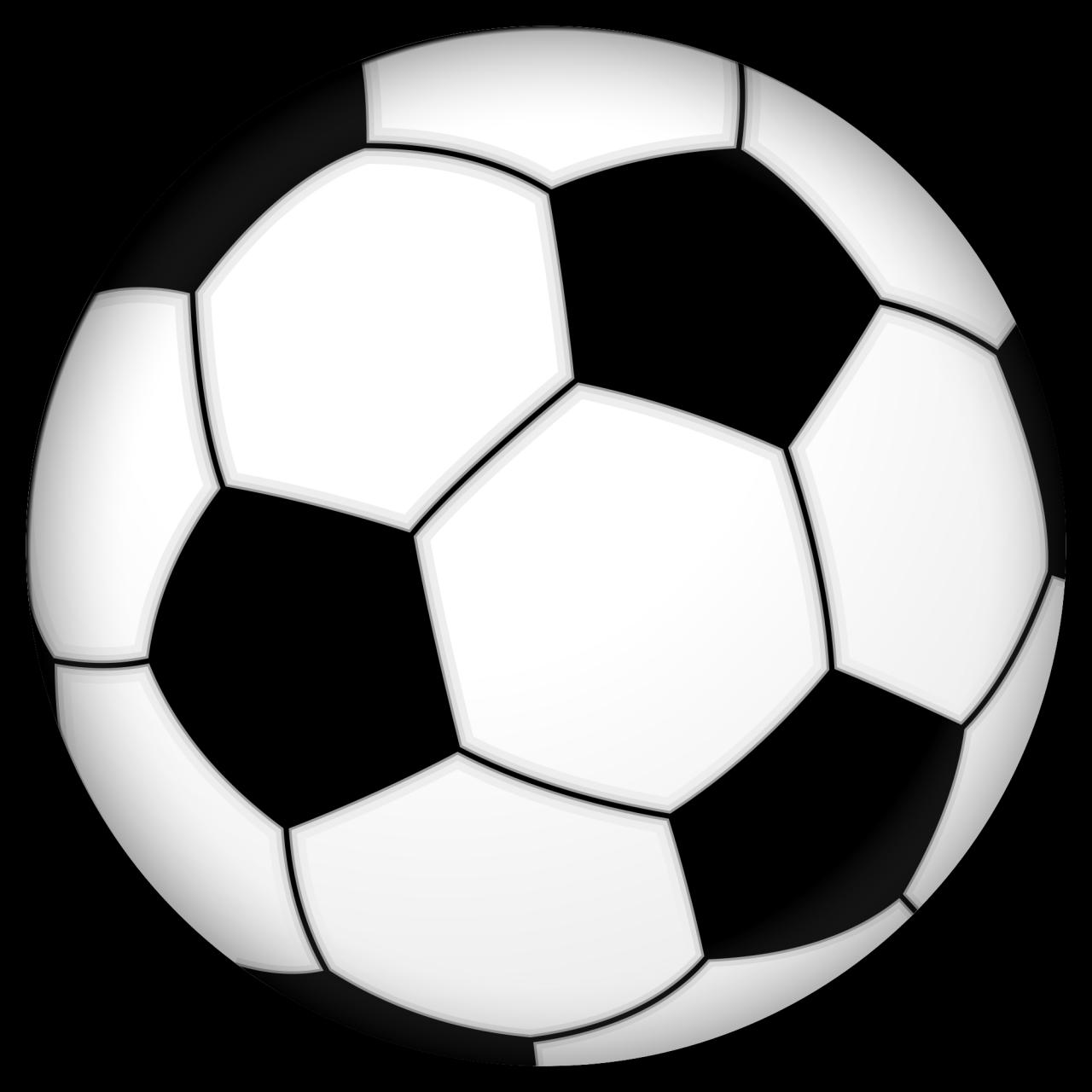 بالصور بحث عن كرة القدم 20160720 1