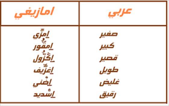 بالصور بعض كلمات مغربية جميلة 20160720 1339