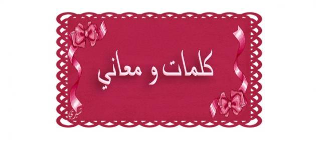 بالصور بعض كلمات مغربية جميلة 20160720 1342