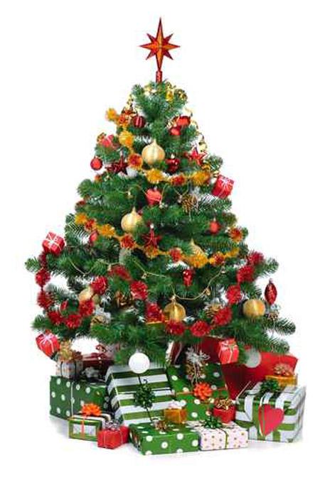 بالصور صور شجرة الميلاد لعام 2019 20160720 1504