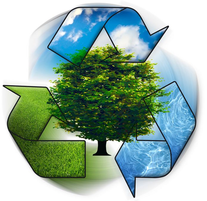 بالصور فقرة عن المحافظة على البيئة 20160720 1529
