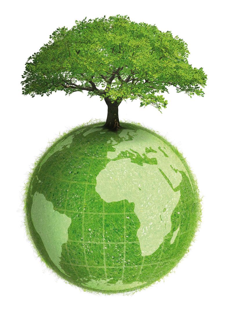 بالصور فقرة عن المحافظة على البيئة 20160720 1530