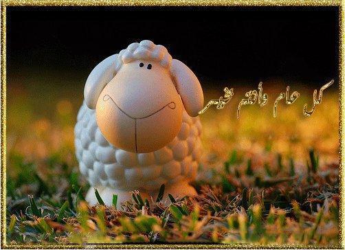 بالصور اجمل صور خرفان العيد 20160720 622