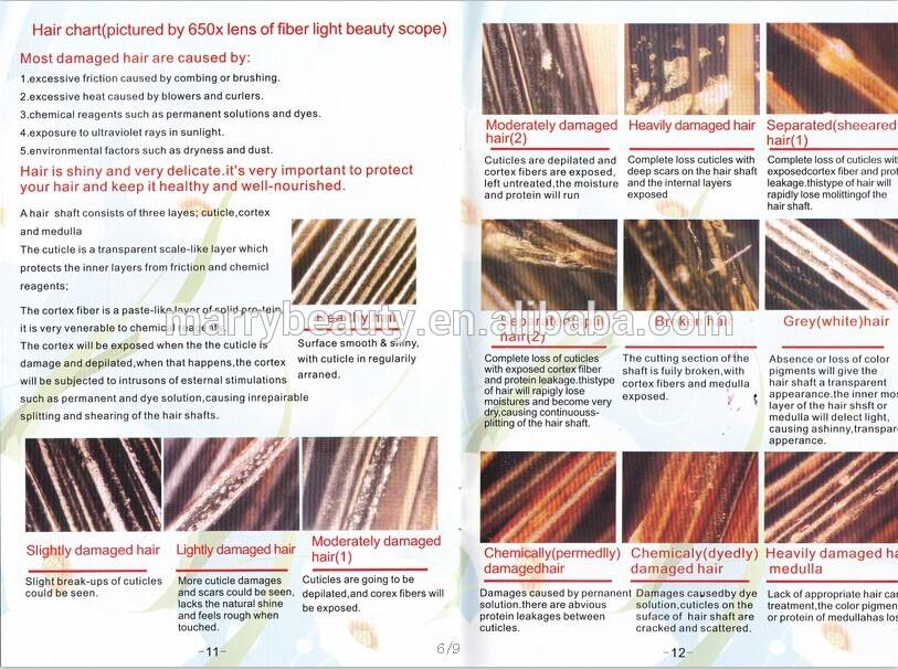 بالصور تحليل المعادن عن طريق الشعر 20160721 467