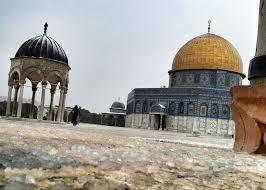 بالصور اجمل كلمات رائعة عن القدس 20160722 408