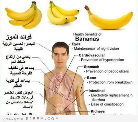 بالصور فوائد الموز و اضرار تناوله بكثرة وحقيقة زيادته للوزن 20160723 1062