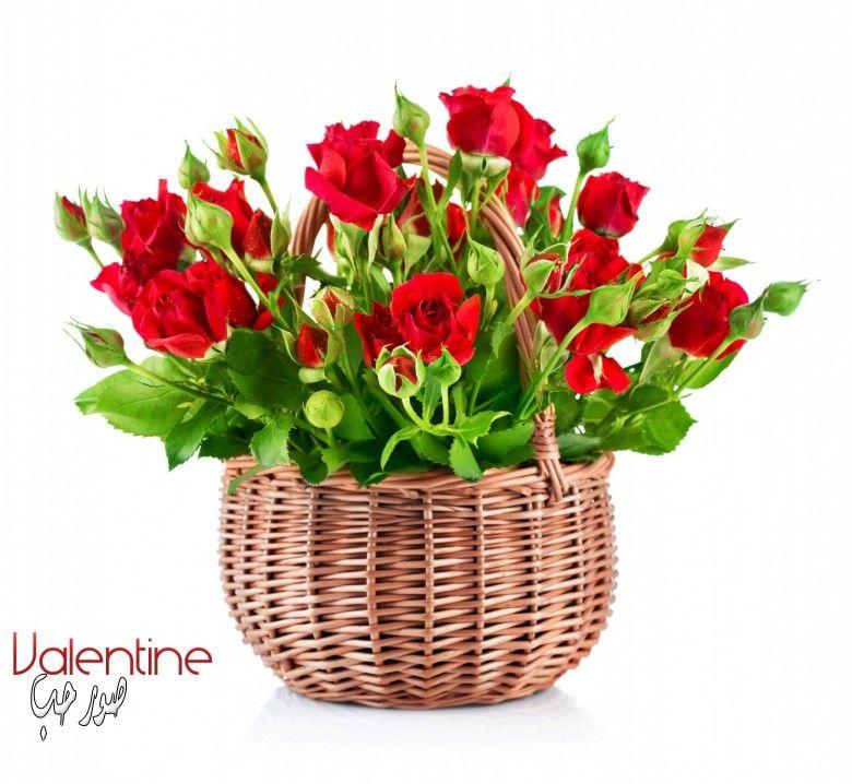 بالصور احلى بوكيه ورد باجمل الورود والازهار 20160723 228