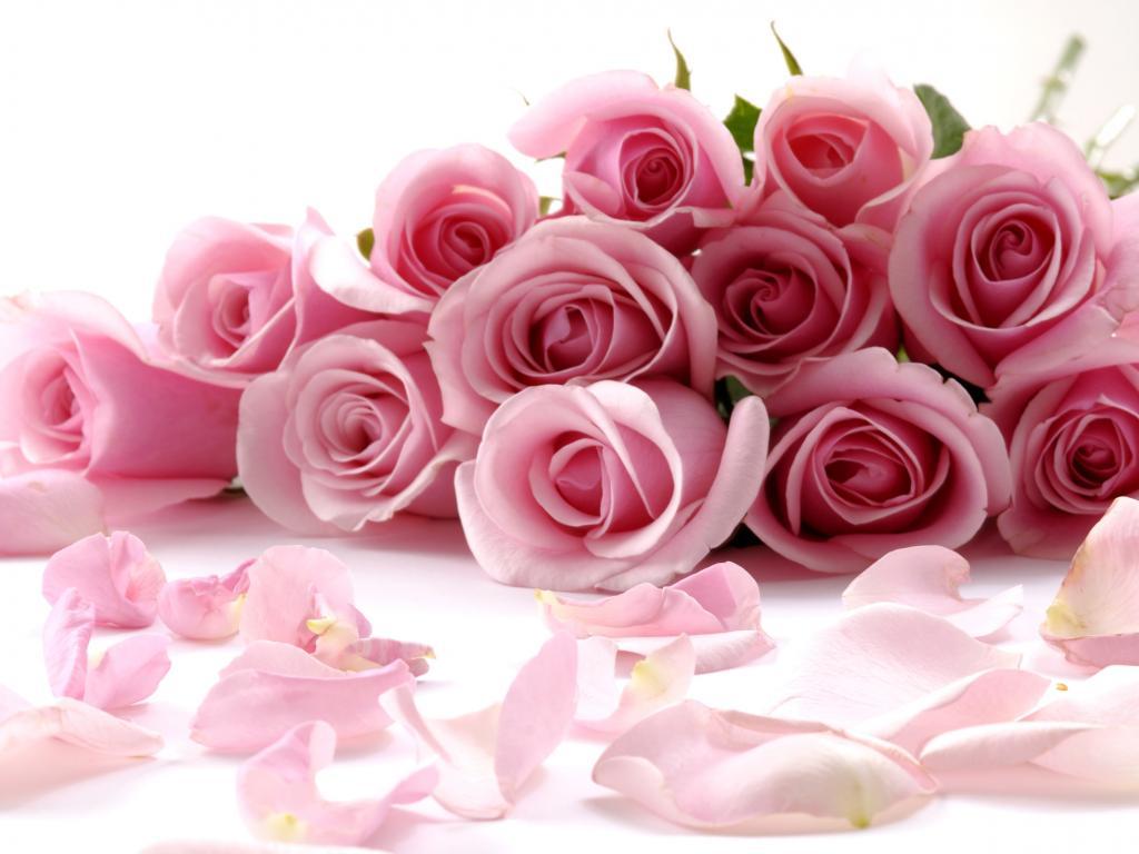 بالصور احلى بوكيه ورد باجمل الورود والازهار 20160723 233