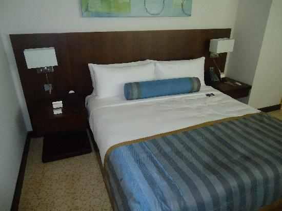 بالصور فندق راديسون رويال دبي 20160724 406