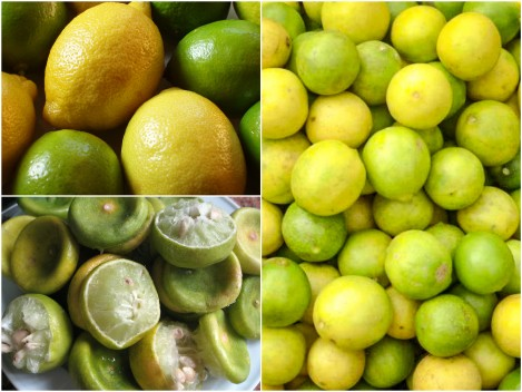 رجيم الليمون .<p></p><br>