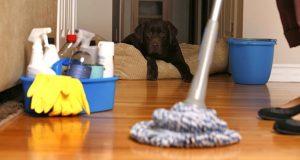 صوره طرق تنظيف المنزل وترتيبه