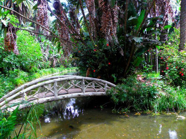 صوره معلومات عن الحديقة الحامة