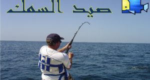 صوره طرق كيفية صيد السمك