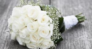 صوره اجمل صور زهور بيضاء