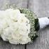 بالصور اجمل صور زهور بيضاء sowar ward D8B5D988D8B1 D988D8B1D8AF D8A7D8A8D98AD8B628129 70x70